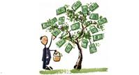 Không góp đủ vốn điều lệ, chủ sở hữu công ty có được quyền rút lợi nhuận?