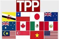 Hội nhập TPP, phải tuân thủ nghiêm ngặt hơn về sở hữu trí tuệ