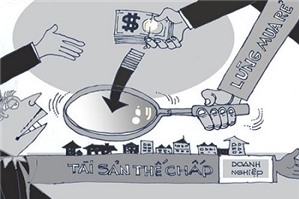 Tòa án nào có thầm quyền giải quyết thủ tục phá sản của hợp tác xã?