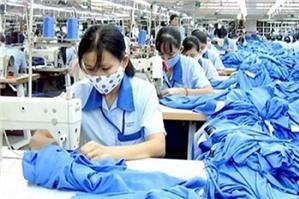 Công ty bắt buộc người lao động nghỉ phép năm là đúng hay sai?