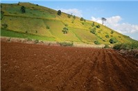 Hồ sơ, thủ tục cho thuê lại quyền sử dụng đất