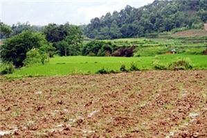 Hủy thỏa thuận thi hành án để trả tiền cho bên mua đất?