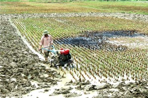 Hành vi xả thải gây ô nhiễm nguồn nước của các hộ dân?