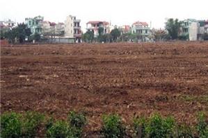 Cấp giấy chứng nhận quyền sử dụng đất cho đất khai hoang