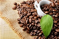 Luật sư tư vấn về các thủ tục mua bán sản phẩm cà phê hòa tan