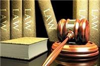 Luật sư tư vấn quyền thành lập doanh nghiệp của giám đốc công ty TNHH?