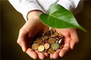 Chủ đầu tư có nhất định phải đăng tải thông báo mời chào hàng cạnh tranh không?