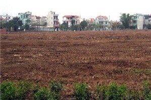 Cấp Giấy chứng nhận quyền sử dụng đất với đất ở lâu năm ổn định