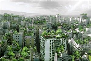 Quyền bề mặt - một quyền năng ưu việt về tài sản