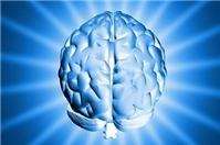 Sở hữu trí tuệ là một tài sản đặc biệt của doanh nghiệp