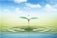 Kiểm toán sở hữu trí tuệ - Công thức phát triển cho doanh nghiệp