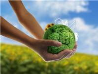 Thực hiện đánh giá tác động môi trường đối với khách sạn như thế nào?