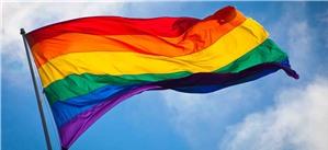 Người đồng tính, song tính, chuyển giới, liên giới tính (LGBTI)