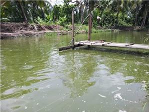 Tự ý đào ao nuôi trồng thủy sản bị xử phạt như thế nào?