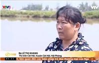 Thu hồi đất cho Dự án Deep C III  (Cát Hải): Ba nông dân đăng ký tổ chức họp báo
