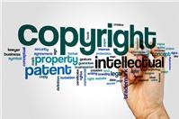 Các loại hình tác phẩm được bảo hộ và không được bảo hộ trong quyền tác giả